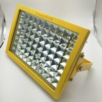 Explosion Proof Lighting Australia 100W