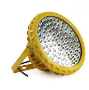 LED Flood Explosion Proof Light 100W